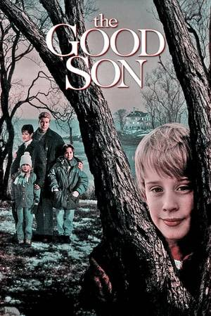 Watch The Good Son Online