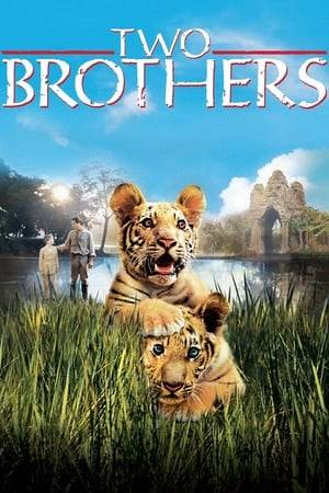 Watch Two Brothers Online