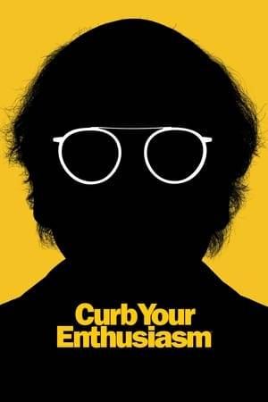Watch Curb Your Enthusiasm Online