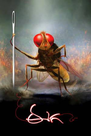 Watch Eega Online