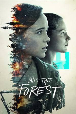 Watch Into the Forest Online