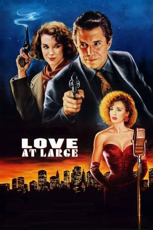 Watch Love at Large Online