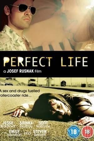 Watch Perfect Life Online