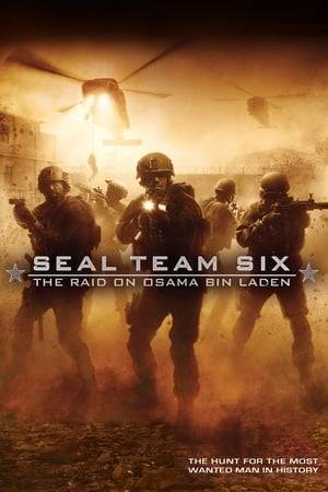 Watch Seal Team Six: The Raid on Osama Bin Laden Online