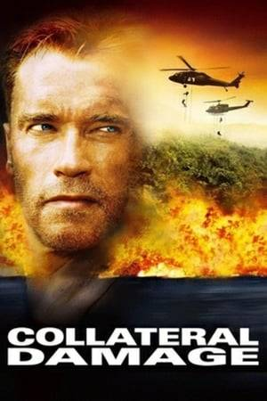 Watch Collateral Damage Online