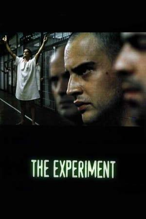 Watch The Experiment Online