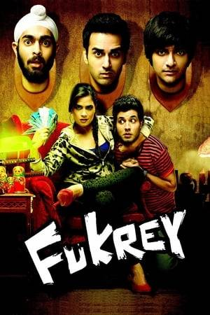 Watch Fukrey Online