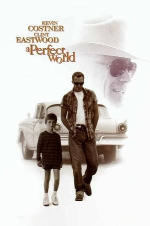 Watch A Perfect World Online