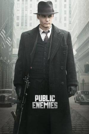 Watch Public Enemies Online