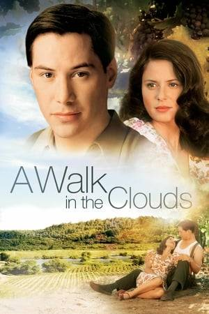 Watch A Walk in the Clouds Online