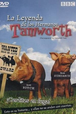 Watch The Legend of the Tamworth Two Online