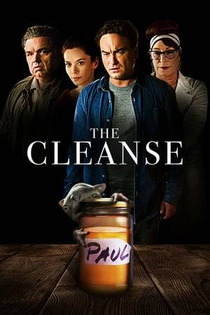 Watch The Cleanse Online