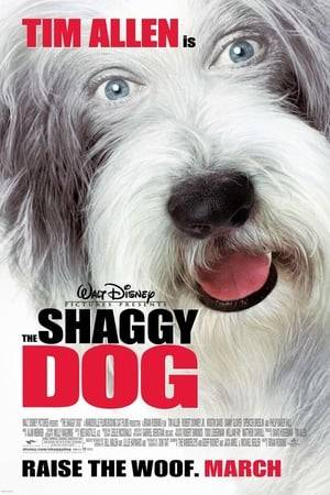 Watch The Shaggy Dog Online