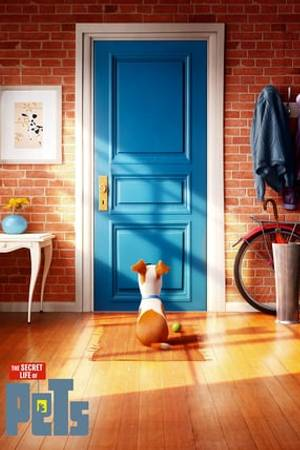 Watch The Secret Life of Pets Online