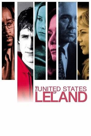 Watch The United States of Leland Online