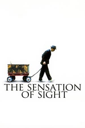 Watch The Sensation of Sight Online