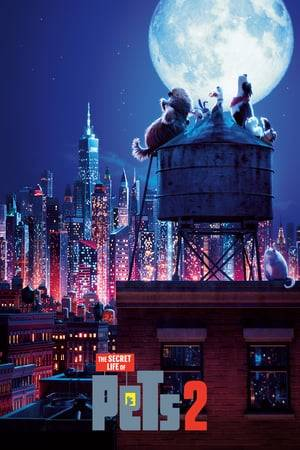 Watch The Secret Life of Pets 2 Online