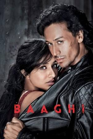 Watch Baaghi Online