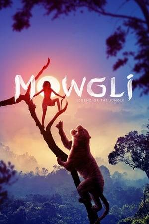 Watch Mowgli: Legend of the Jungle Online