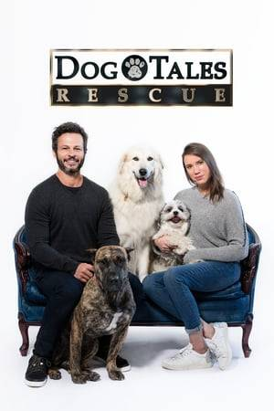 Watch Dog Tales Rescue Online