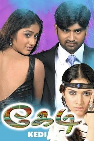 Watch Kedi Online