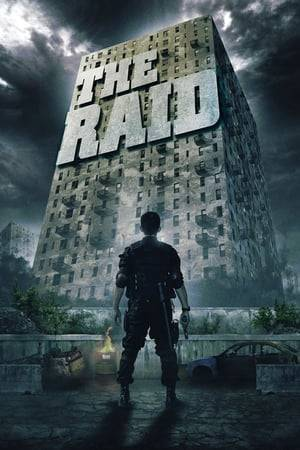 Watch The Raid Online