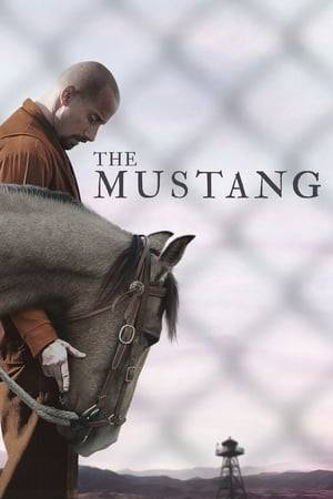 Watch The Mustang Online