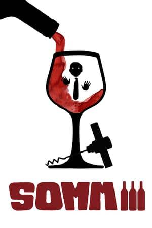 Watch Somm 3 Online