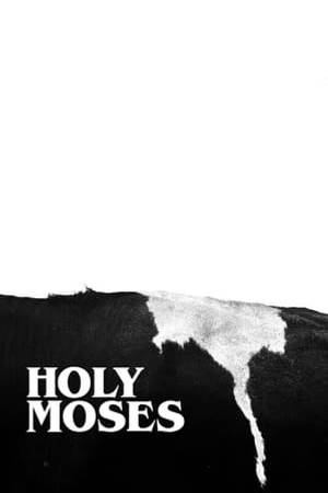Watch Holy Moses Online