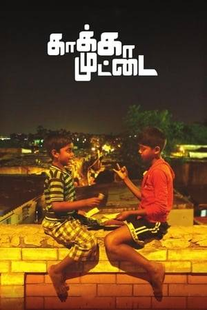 Watch Kaaka Muttai Online