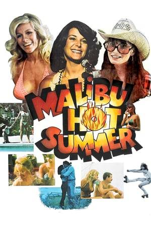 Watch Malibu Hot Summer Online