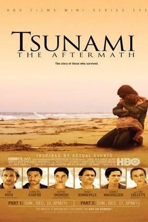 Watch Tsunami: The Aftermath Online