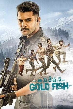 Watch Operation Gold Fish Online