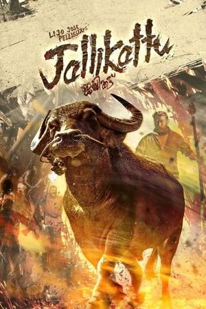 Watch Jallikattu Online