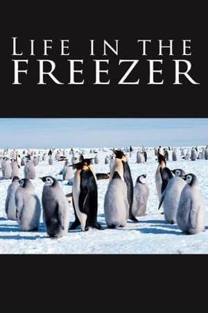 Watch Life in the Freezer Online
