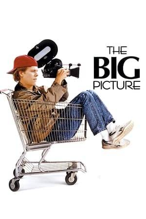 Watch The Big Picture Online