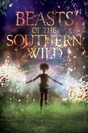 Watch Beasts of the Southern Wild Online