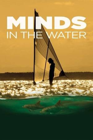 Watch Minds in the Water Online