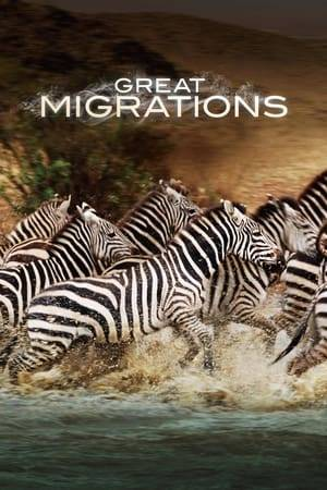 Watch Great Migrations Online