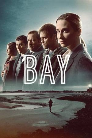 Watch The Bay Online