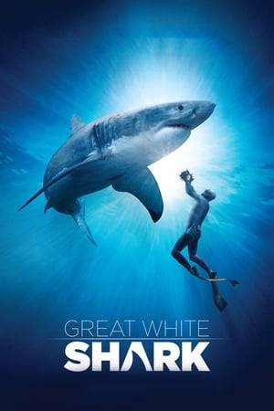 Watch Great White Shark Online