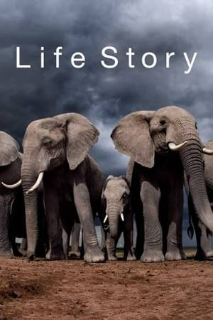 Watch Life Story Online