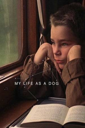 Watch My Life as a Dog Online