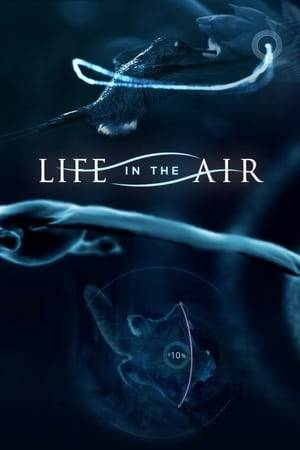Watch Life in the Air Online