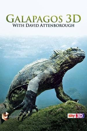 Watch Galapagos 3D with David Attenborough Online