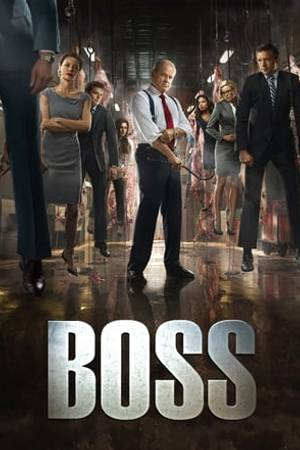Watch Boss Online