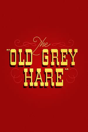 Watch The Old Grey Hare Online