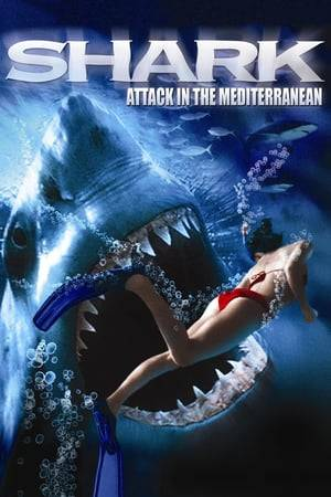 Watch Shark Attack in the Mediterranean Online