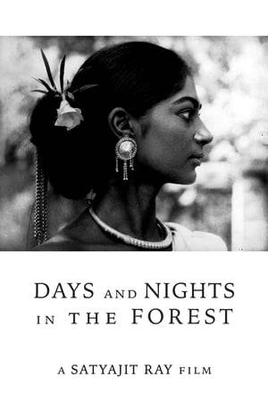 Watch Days and Nights in the Forest Online