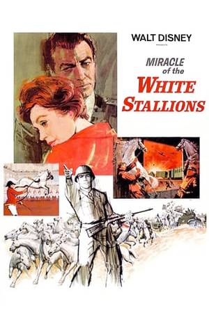 Watch Miracle of the White Stallions Online